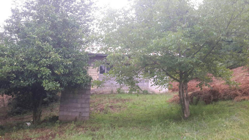 فروش خانه کلنگی با 2000 متر زمین سیاهکل