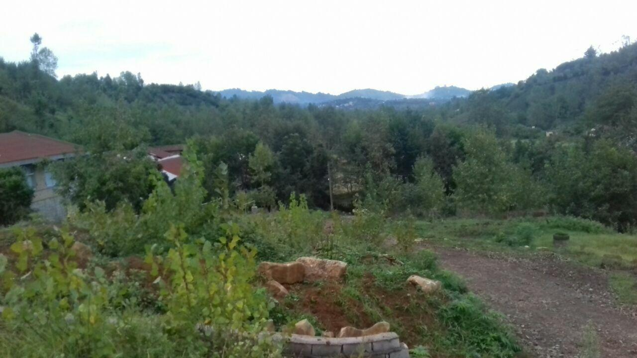 فروش زمین جنگلی 3200 متری اطاقور بیجارپس