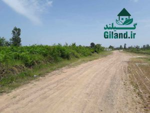 خرید زمین شهری 7000 متری در لنگرود