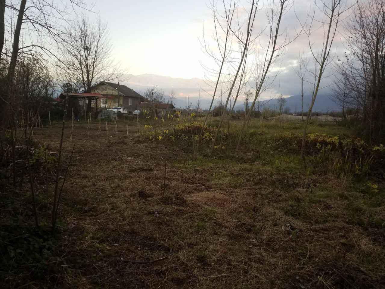فروش زمین مسکونی 1447 متر سنددار رودسر