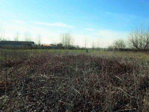 فروش زمین 21 هزار متری آستانه