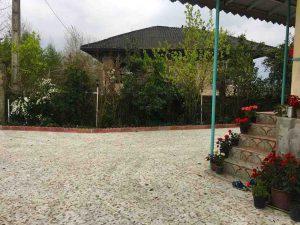 فروش باغ کیوی 1.5 هکتاری در رودسر