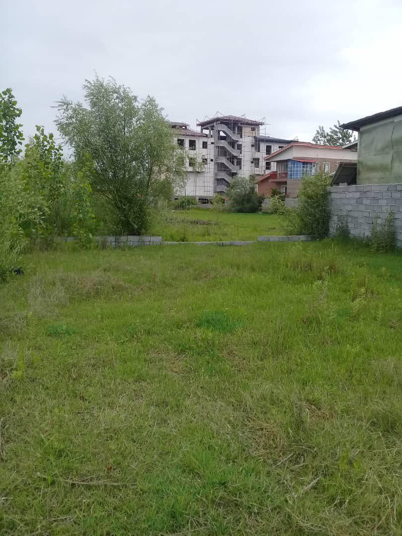 خرید زمین شهر چاف - 300 متری